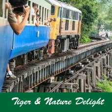 Tiger-&-Nature-Delight