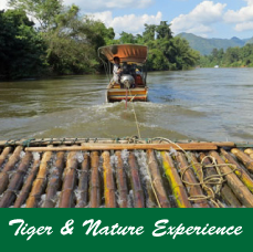 tiger-&-Nature-Experience